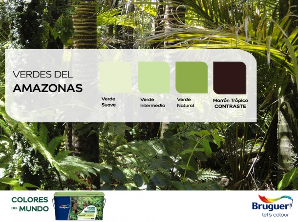 Amazonas_Facebook_1